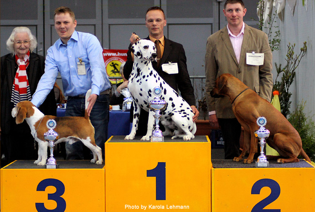 09.04.2011. CAC Oldenburg. Spotniks First Farao For Ormond Best of Breed en Best of Group09.04.2011. CAC Oldenburg. Spotniks First Farao For Ormond Best of Breed und Best of Group09.04.2011. CAC Oldenburg. Spotniks First Farao For Ormond Best of Breed and Best of Group