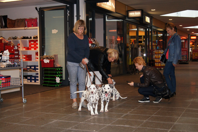 Mieke and Margreet at the shopping center with ... Giant Porter, Donna Yaela, Belisa
